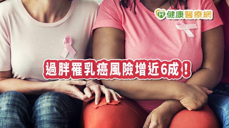 肥胖罹乳癌增6成! 這幾件事可降低罹癌風險_杏仁酸