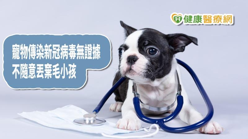 港寵物新冠病毒檢測中 港:無證據寵物會傳人_LPG
